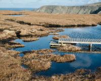 Szetlandy – Morzem targa sztorm