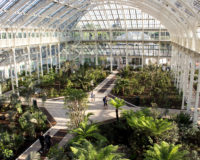 Skarby Kew Gardens