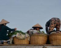 Delta Mekongu – Pływające Targi