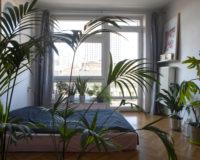 Maria & Jan – Dostaliśmy mieszkanie ze współlokatorem